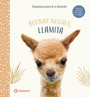 BUENAS NOCHES, LLAMITA